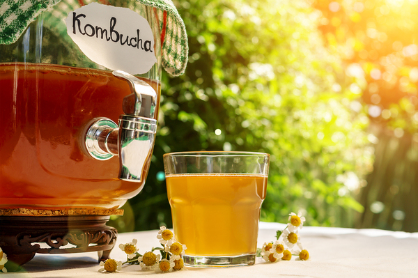 Kombucha 101: What It Is, How It's Made, and Why It's Beneficial